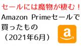 セールには魔物が棲む!Amazon Primeセールで買ったもの(2021年6月)